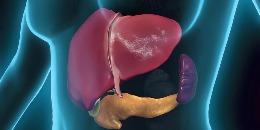 肝胆膵外科 イメージ