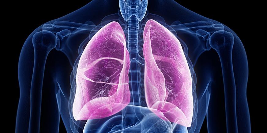 呼吸器外科 イメージ