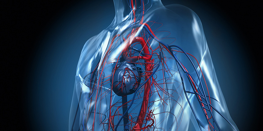 血管外科 イメージ