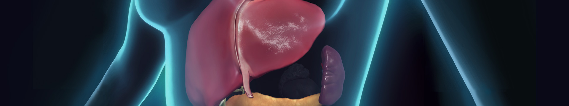 肝胆膵外科 ヒーローイメージ