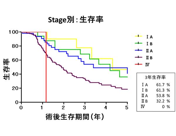 Stage別:生存率